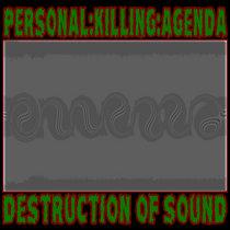 DESTRUCTION OF SOUND EP cover art