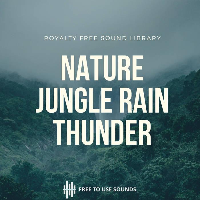 Rain Sounds & Thunder Sounds Indonesia | Rainforest Bali