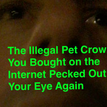 Illegal Pet Crow cover art