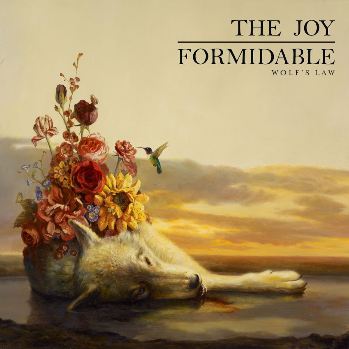 cholla the joy formidable mp3