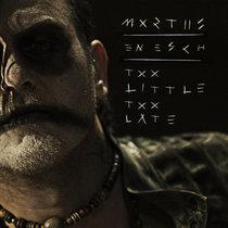 Too Little Too Late (En Esch Remix) cover art