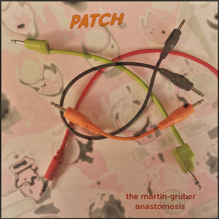 The Martin-Gruber Anastomosis – PATCH