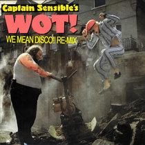 CAPTAIN SENSIBLE - wot?! (WeMeanDisco!! Re-Mix) cover art