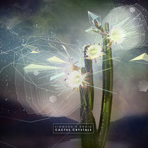Cactus Crystals cover art