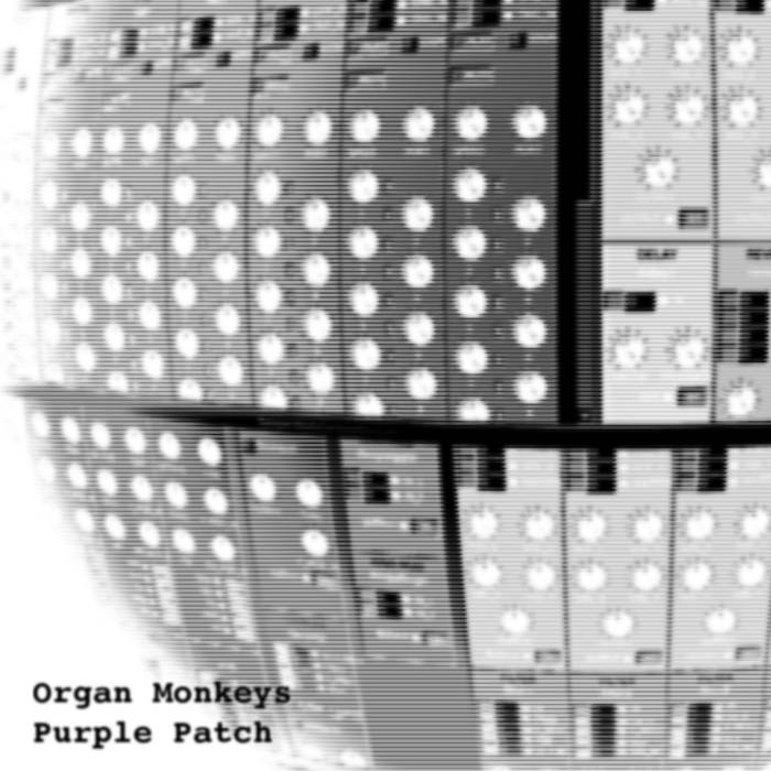 Organ Monkeys – Purple Patch
