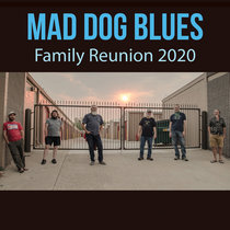 Family Reunion 2020: Disc 2 Songsters, Blazz & Jam cover art
