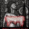"ANGUISH ""Abstract Decomposition"" MCD 2013"