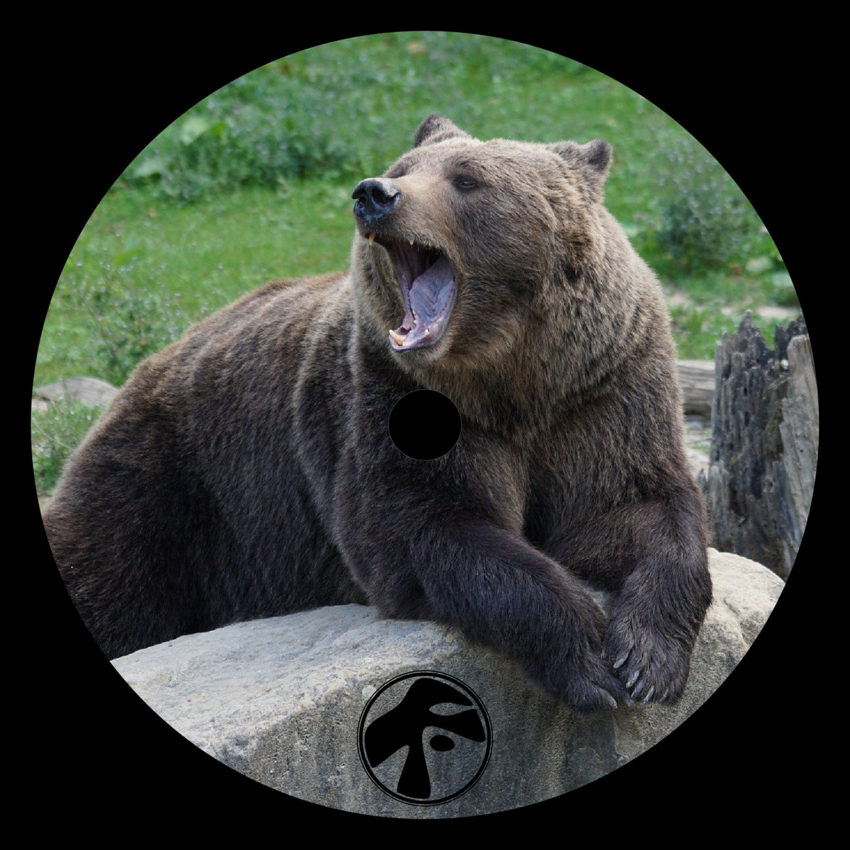 Bearfoot – PRXFREEMONDAY0004