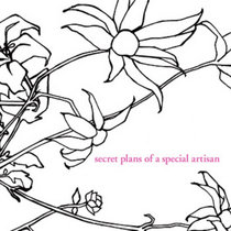 Yuki Kawana -  secret plans of a special artisan cover art
