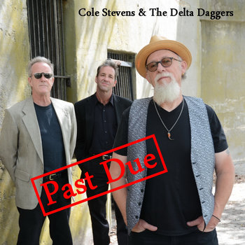 Past Due by Cole Stevens & The Delta Daggers