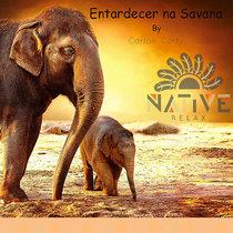 Entardecer na Savana cover art