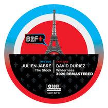 David Duriez - Wilderness (Unreleased Wild Pitch Dub) [2020 Remastered] cover art
