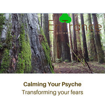 Calming Your Psyche - Transforming your fears cover art