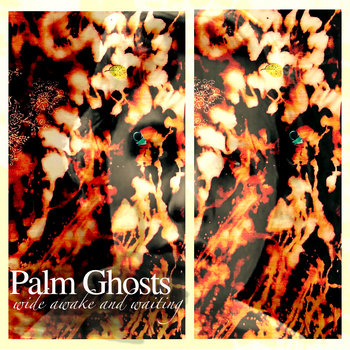 Wide Awake and Waiting by Palm Ghosts