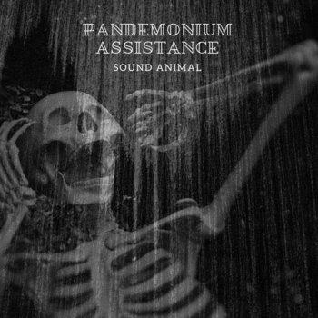 Pandemonium Assistance by Sound Animal