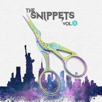 Vol. 5 cover art