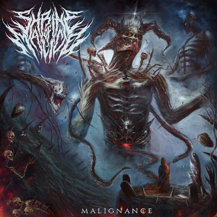 Shrine Of Malice