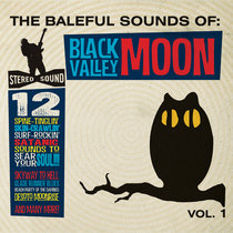 The Baleful Sounds Of Black Valley Moon Vol. 1 cover art