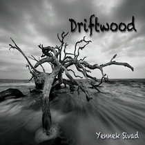 Driftwood cover art