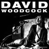 David Woodcock Cover Art