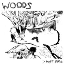 WOODS - 3 night stand (live in memphis 2008) cover art