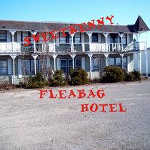 Fleabag Hotel cover art