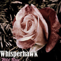 Wild Rose (single) cover art