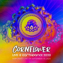 Live @ Earthdance 2020 cover art