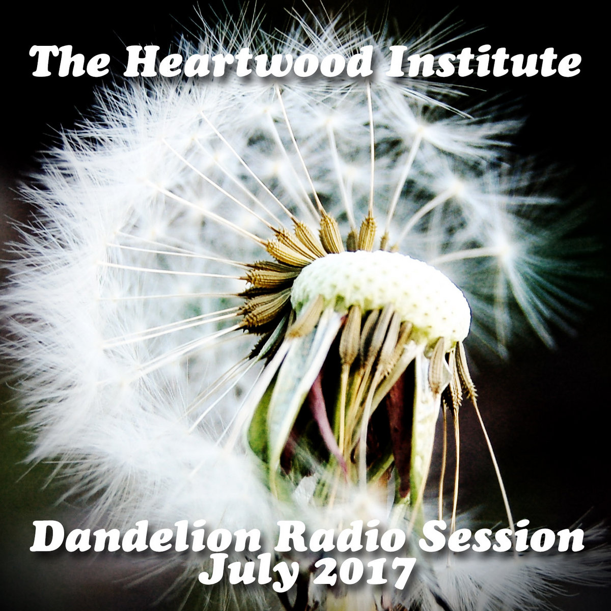 By The Heartwood Institute