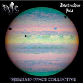 Øresund Space Collective - Music For Pogonologists