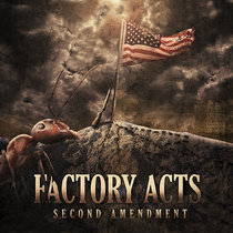 Second Amendment cover art