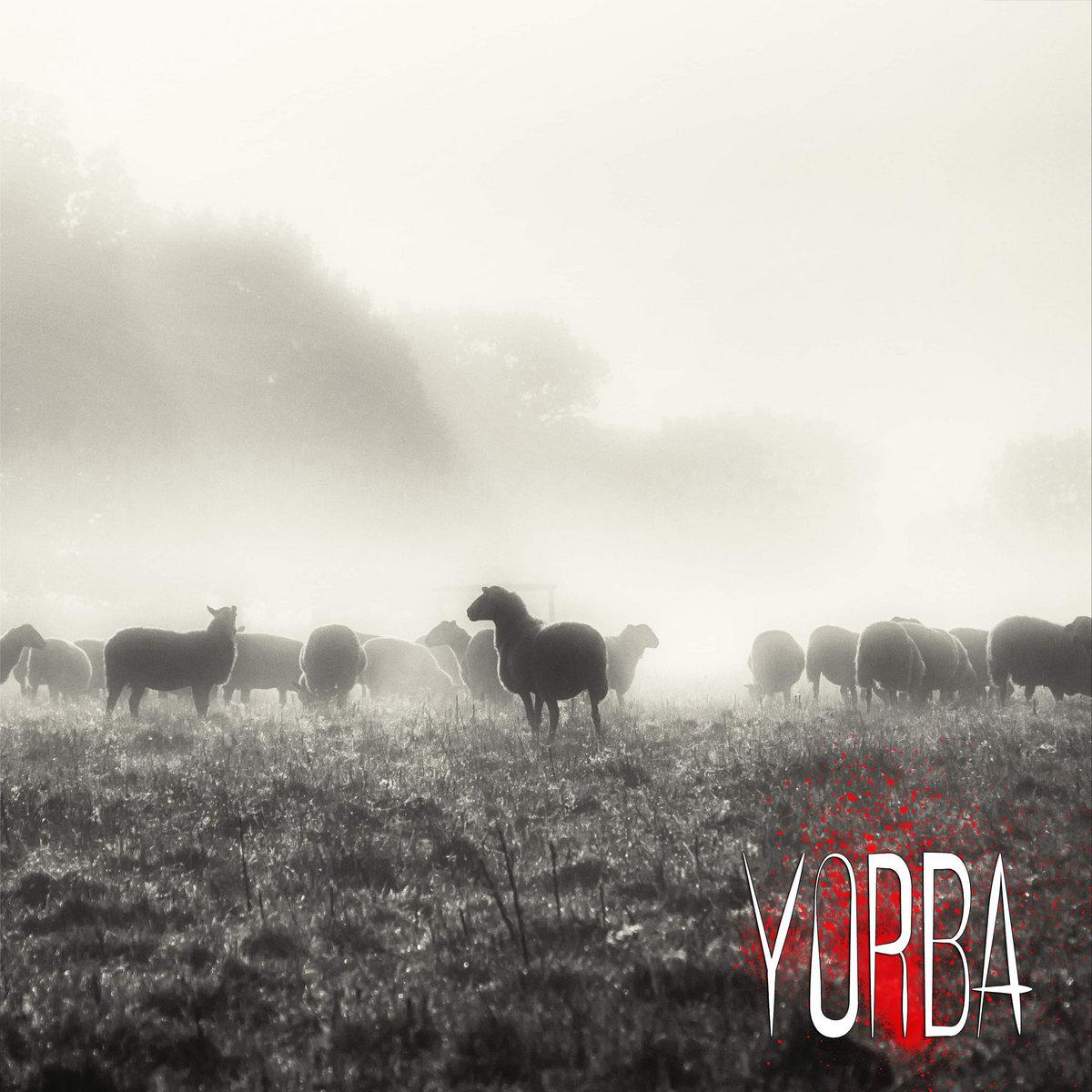 Owce | Yorba