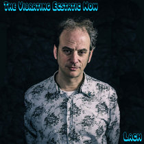 The Vibrating Ecstatic Now cover art