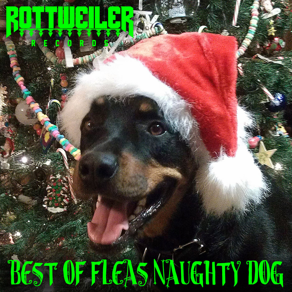 BEST OF FLEAS NAUGHTY DOG + | Rottweiler Records