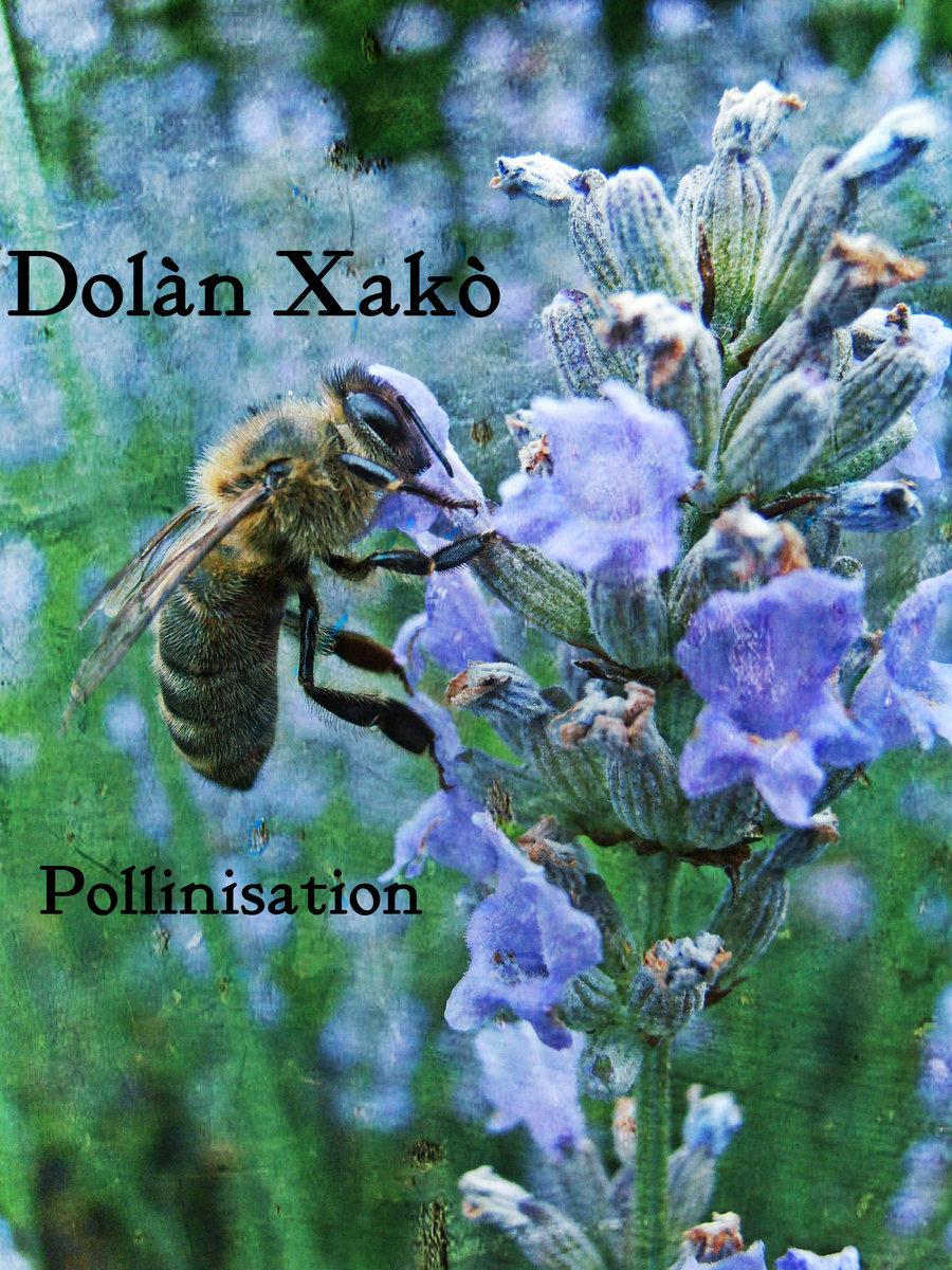 Dolàn Xakò - Pollinisation (2015)