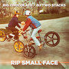 RIP Small Face Cover Art