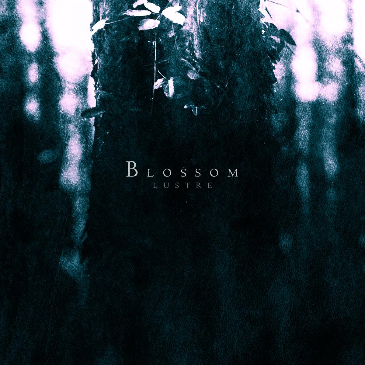 Blossom Lustre