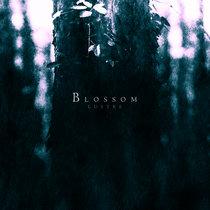 Blossom cover art