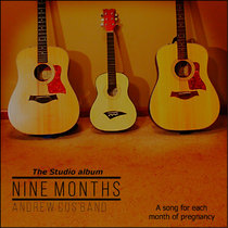 Nine Months: A song for each month of pregnancy [The Studio album] cover art