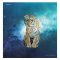 Tiger Vision cover art