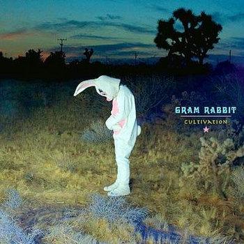 Gram Rabbit Miracles and Metaphors