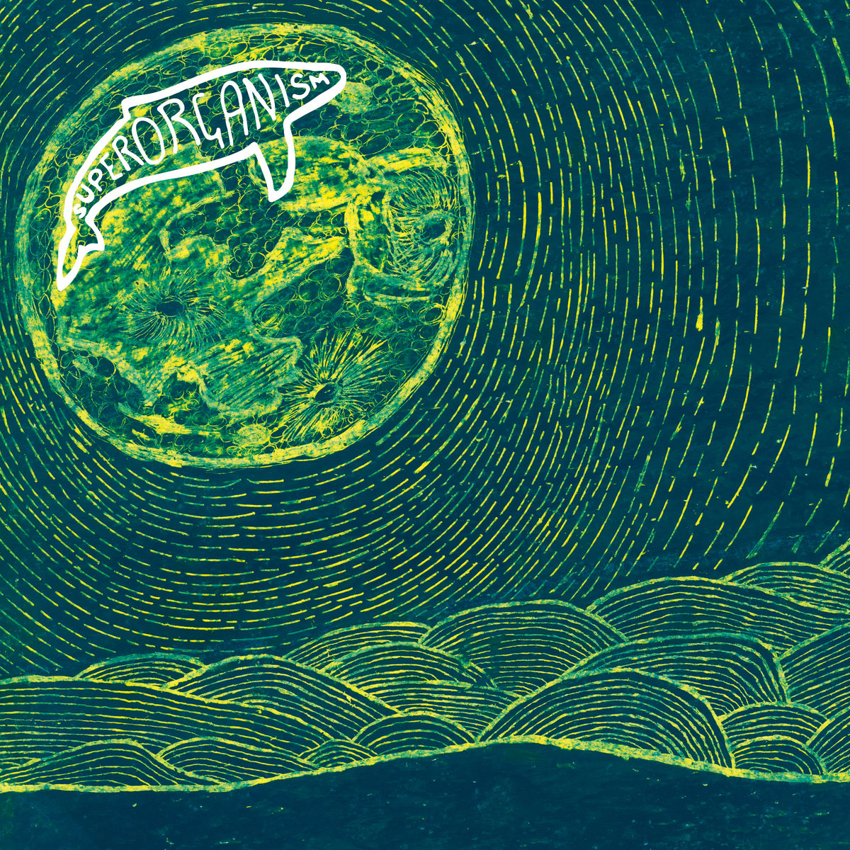 Image result for superorganism album