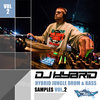 DJ Hybrid Jungle Drum & Bass Samples Vol. 2