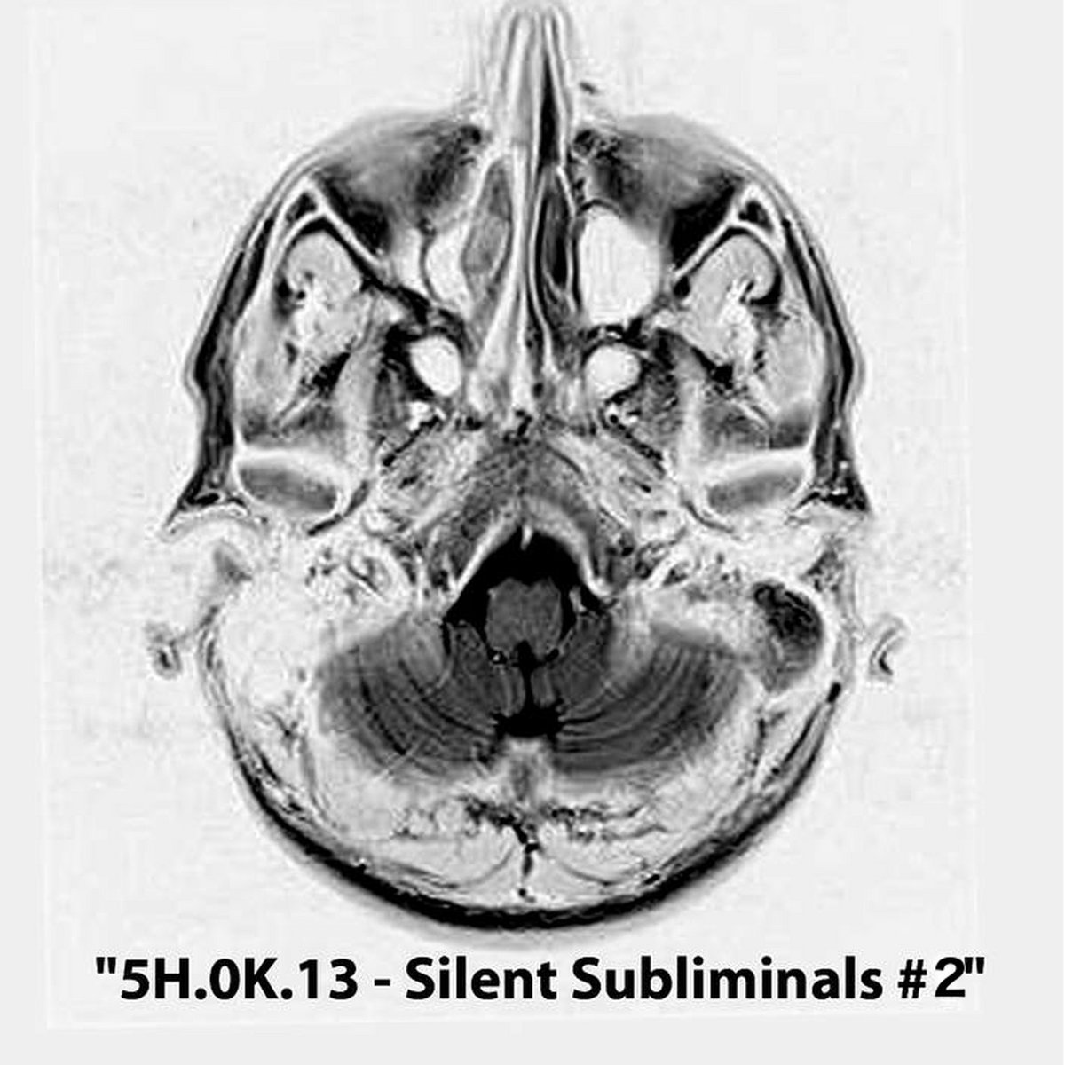 5H.0K.13 - Silent Subliminals #1 & #2 (2015 - 2016)
