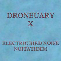 Dronueary X - Noitatidem cover art