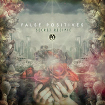 False Positives cover art