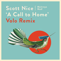 A Call to Home (Volo Remix) cover art