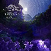 Intangible Remixes cover art