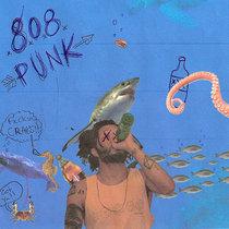 808 Punk cover art