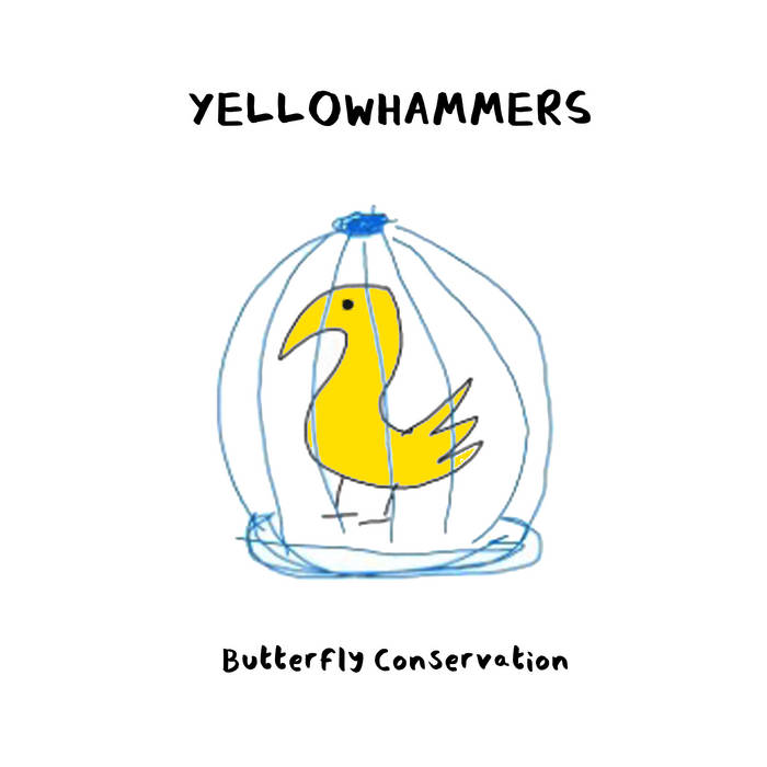 Butterfly Conversation – Yellowhammers